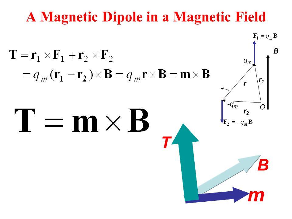 A Magnetic Dipole in a Magnetic Field r B -q m qmqm r1r1 r2r2 O m B T