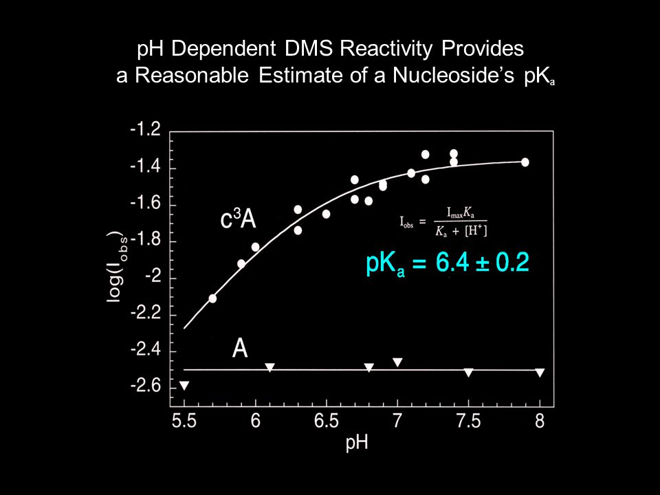pH Dependent DMS Reactivity Provides a Reasonable Estimate of a Nucleoside's pK a