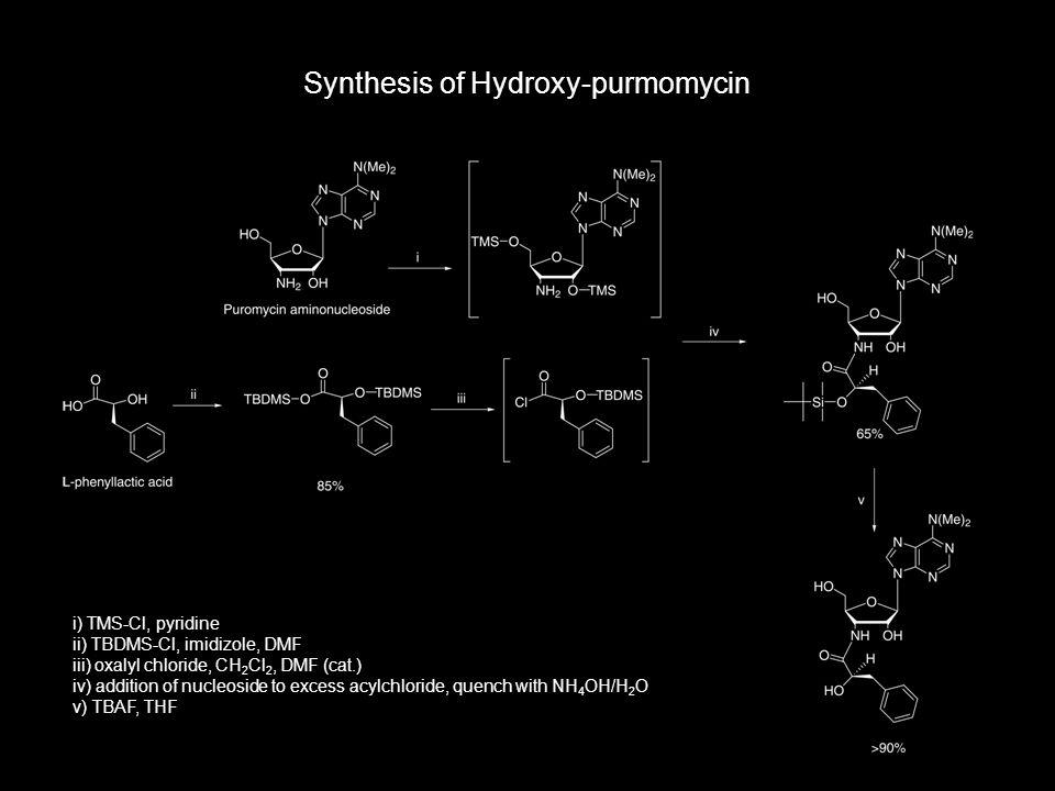 Synthesis of Hydroxy-purmomycin i) TMS-Cl, pyridine ii) TBDMS-Cl, imidizole, DMF iii) oxalyl chloride, CH 2 Cl 2, DMF (cat.) iv) addition of nucleosid