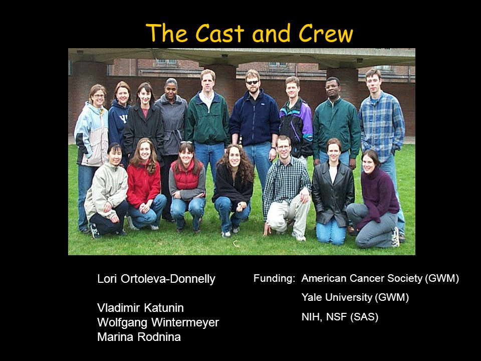 The Cast and Crew Funding: American Cancer Society (GWM) Yale University (GWM) NIH, NSF (SAS) Lori Ortoleva-Donnelly Vladimir Katunin Wolfgang Wintermeyer Marina Rodnina