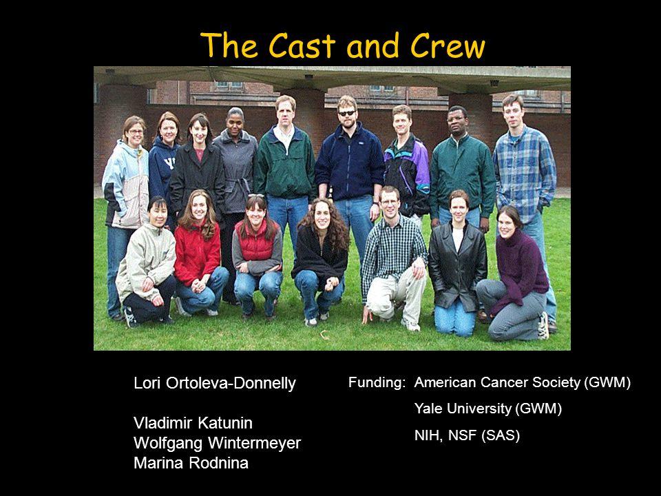 The Cast and Crew Funding: American Cancer Society (GWM) Yale University (GWM) NIH, NSF (SAS) Lori Ortoleva-Donnelly Vladimir Katunin Wolfgang Winterm