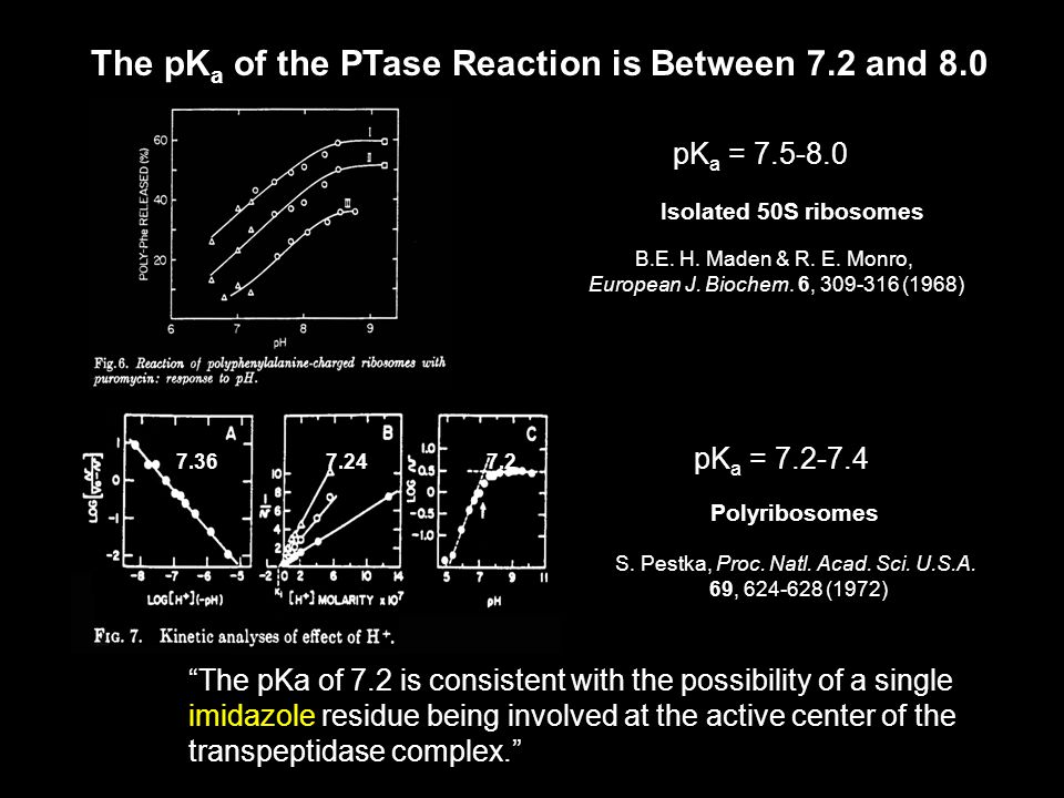 Puromycin pk a = 6.9 ± 0.2 pK a of the nucleophile is below that of the reaction