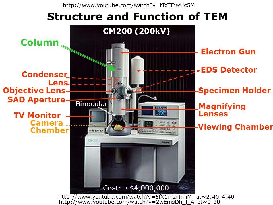 Electron Gun EDS Detector Condenser Lens Specimen HolderObjective Lens Magnifying Lenses CM200 (200kV) SAD Aperture TV Monitor Viewing Chamber Camera