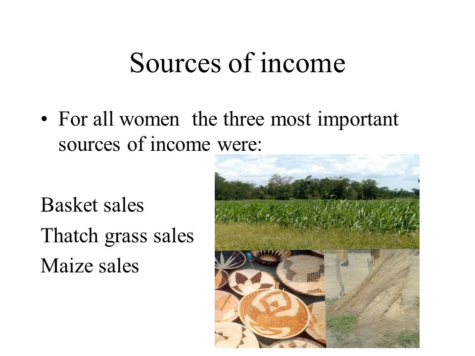 Sources of income For all women the three most important sources of income were: Basket sales Thatch grass sales Maize sales