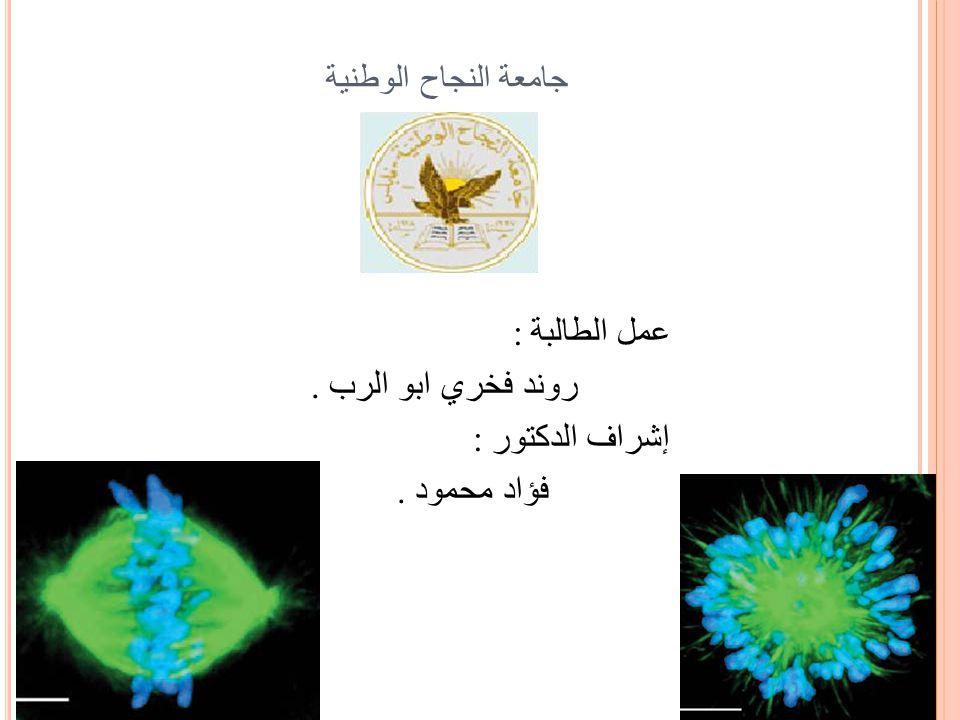 جامعة النجاح الوطنية عمل الطالبة :. روند فخري ابو الرب إشراف الدكتور :. فؤاد محمود