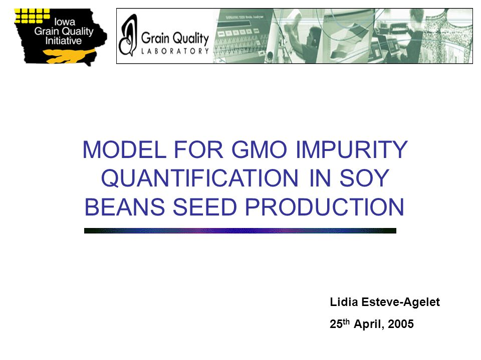 MODEL FOR GMO IMPURITY QUANTIFICATION IN SOY BEANS SEED PRODUCTION Lidia Esteve-Agelet 25 th April, 2005