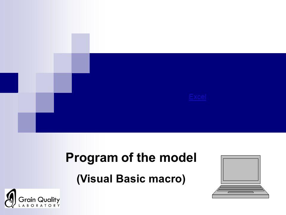 Excel Program of the model (Visual Basic macro)