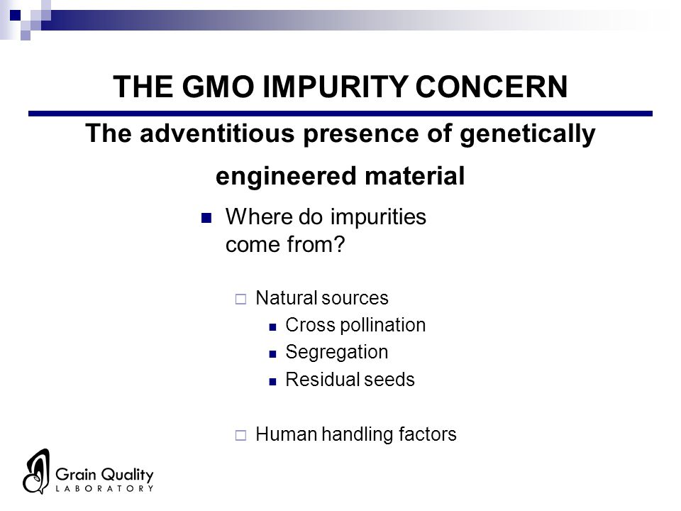 THE GMO IMPURITY CONCERN The adventitious presence of genetically engineered material Where do impurities come from?  Natural sources Cross pollinati