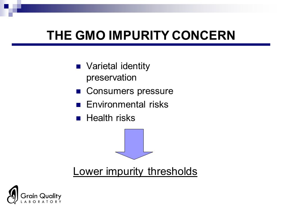 THE GMO IMPURITY CONCERN Varietal identity preservation Consumers pressure Environmental risks Health risks Lower impurity thresholds