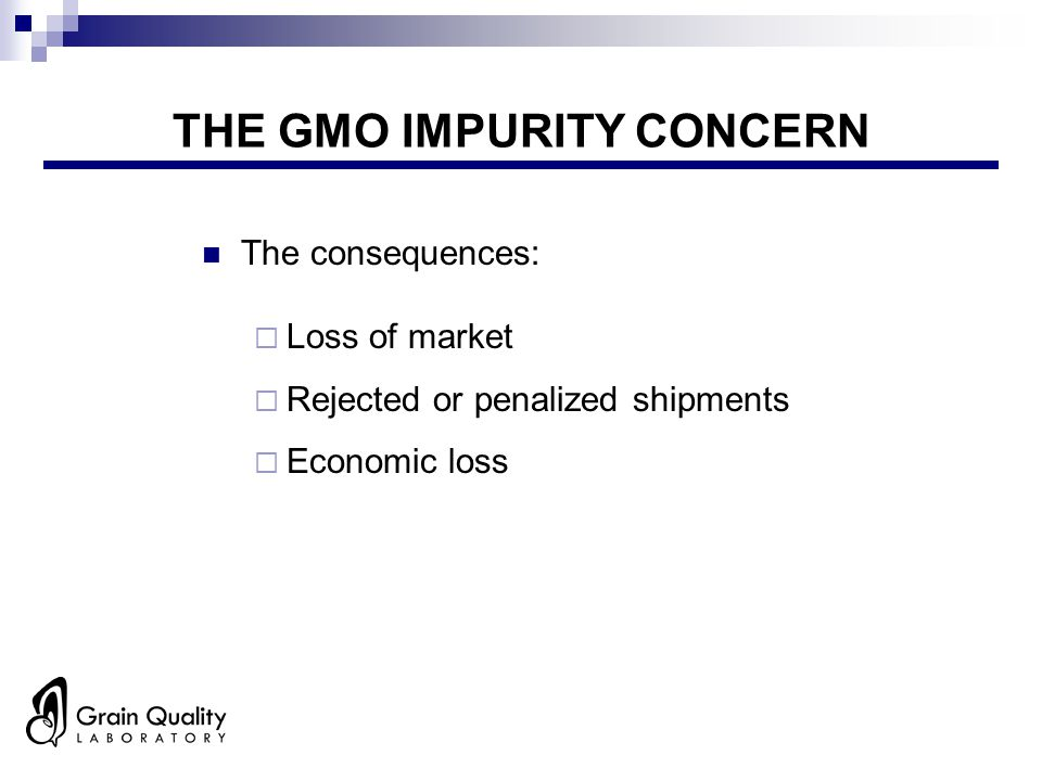 THE GMO IMPURITY CONCERN The consequences:  Loss of market  Rejected or penalized shipments  Economic loss