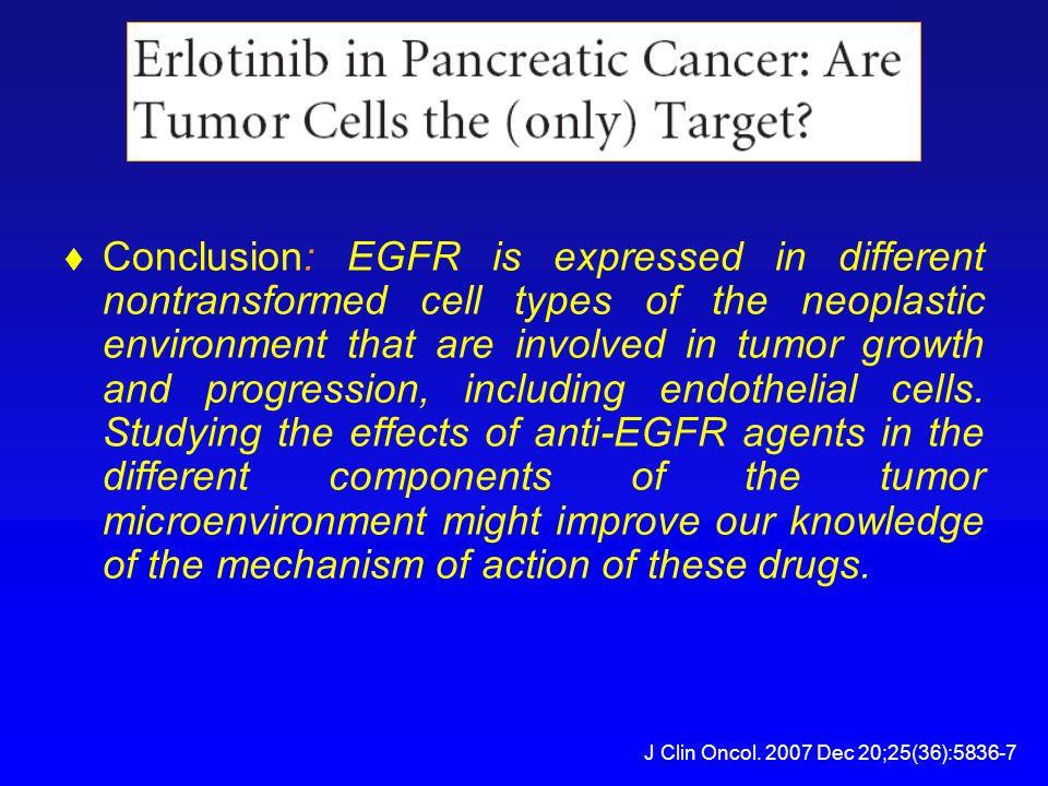  Conclusion: EGFR is expressed in different nontransformed cell types of the neoplastic environment that are involved in tumor growth and progression, including endothelial cells.
