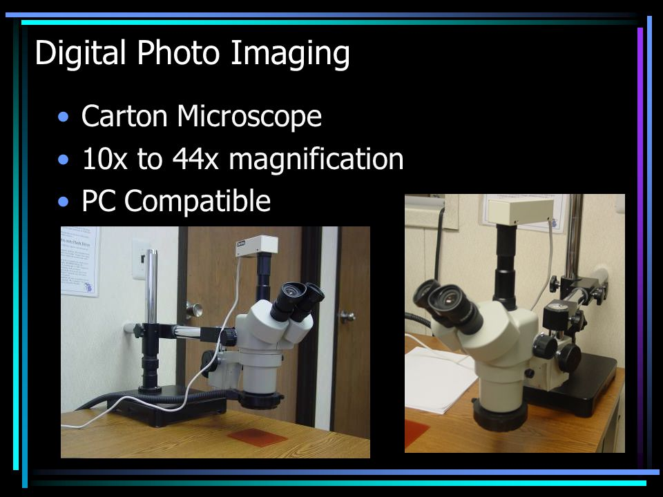 Digital Photo Imaging Carton Microscope 10x to 44x magnification PC Compatible