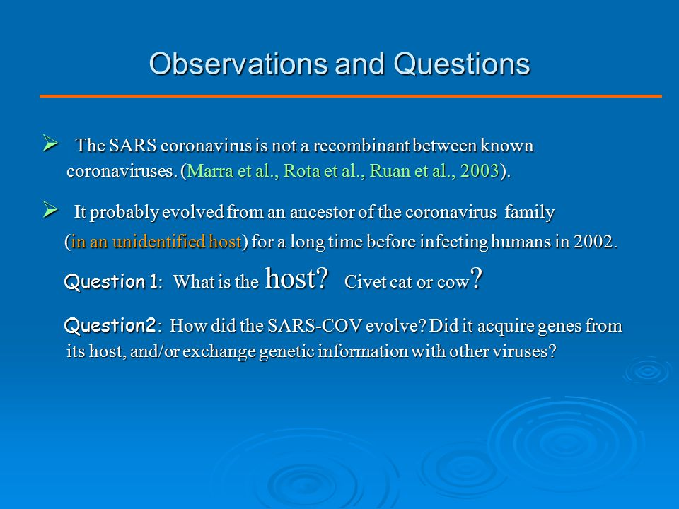 Observations and Questions  The SARS coronavirus is not a recombinant between known coronaviruses. (Marra et al., Rota et al., Ruan et al., 2003). 