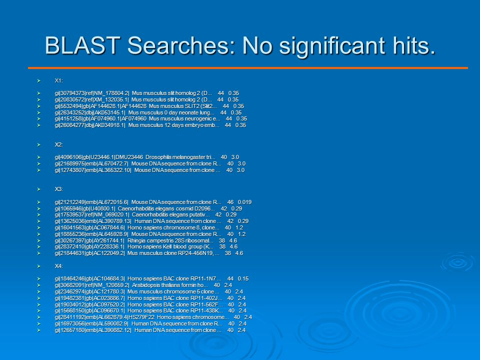 BLAST Searches: No significant hits.