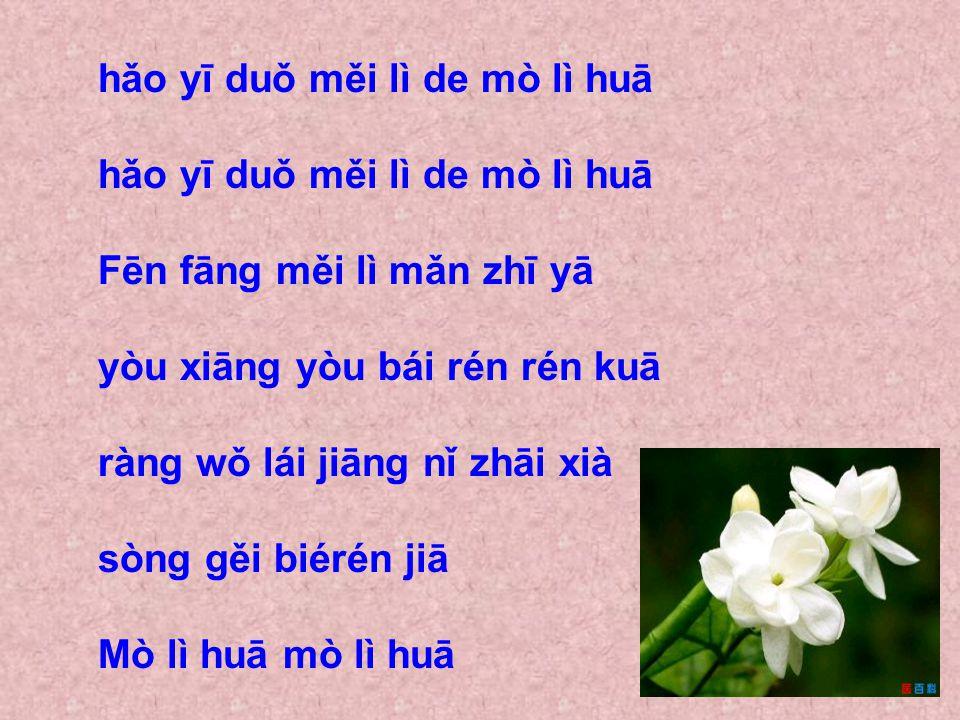 hǎo yī duǒ měi lì de mò lì huā Fēn fāng měi lì mǎn zhī yā yòu xiāng yòu bái rén rén kuā ràng wǒ lái jiāng nǐ zhāi xià sòng gěi biérén jiā Mò lì huā mò lì huā