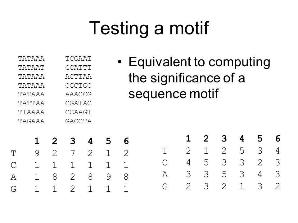Testing a motif Equivalent to computing the significance of a sequence motif TATAAA TATAAT TATAAA TATTAA TTAAAA TAGAAA TCGAAT GCATTT ACTTAA CGCTGC AAACCG CGATAC CCAAGT GACCTA 1 2 3 4 5 6 T 9 2 7 2 1 2 C 1 1 1 1 1 1 A 1 8 2 8 9 8 G 1 1 2 1 1 1 1 2 3 4 5 6 T 2 1 2 5 3 4 C 4 5 3 3 2 3 A 3 3 5 3 4 3 G 2 3 2 1 3 2