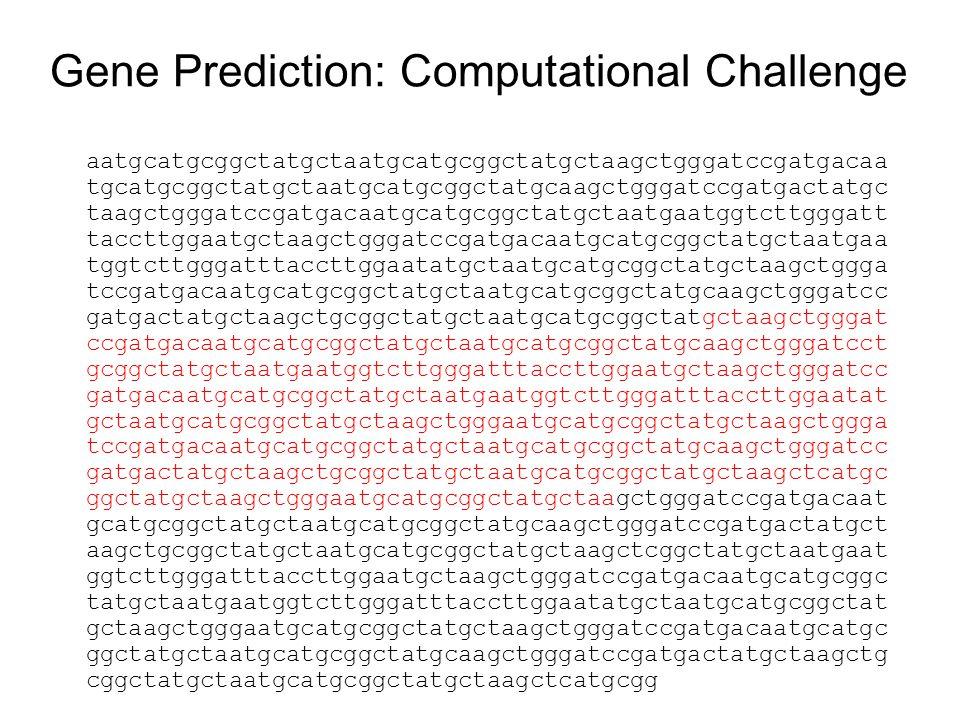 Gene Prediction: Computational Challenge aatgcatgcggctatgctaatgcatgcggctatgctaagctgggatccgatgacaa tgcatgcggctatgctaatgcatgcggctatgcaagctgggatccgatgactatgc taagctgggatccgatgacaatgcatgcggctatgctaatgaatggtcttgggatt taccttggaatgctaagctgggatccgatgacaatgcatgcggctatgctaatgaa tggtcttgggatttaccttggaatatgctaatgcatgcggctatgctaagctggga tccgatgacaatgcatgcggctatgctaatgcatgcggctatgcaagctgggatcc gatgactatgctaagctgcggctatgctaatgcatgcggctatgctaagctgggat ccgatgacaatgcatgcggctatgctaatgcatgcggctatgcaagctgggatcct gcggctatgctaatgaatggtcttgggatttaccttggaatgctaagctgggatcc gatgacaatgcatgcggctatgctaatgaatggtcttgggatttaccttggaatat gctaatgcatgcggctatgctaagctgggaatgcatgcggctatgctaagctggga tccgatgacaatgcatgcggctatgctaatgcatgcggctatgcaagctgggatcc gatgactatgctaagctgcggctatgctaatgcatgcggctatgctaagctcatgc ggctatgctaagctgggaatgcatgcggctatgctaagctgggatccgatgacaat gcatgcggctatgctaatgcatgcggctatgcaagctgggatccgatgactatgct aagctgcggctatgctaatgcatgcggctatgctaagctcggctatgctaatgaat ggtcttgggatttaccttggaatgctaagctgggatccgatgacaatgcatgcggc tatgctaatgaatggtcttgggatttaccttggaatatgctaatgcatgcggctat gctaagctgggaatgcatgcggctatgctaagctgggatccgatgacaatgcatgc ggctatgctaatgcatgcggctatgcaagctgggatccgatgactatgctaagctg cggctatgctaatgcatgcggctatgctaagctcatgcgg