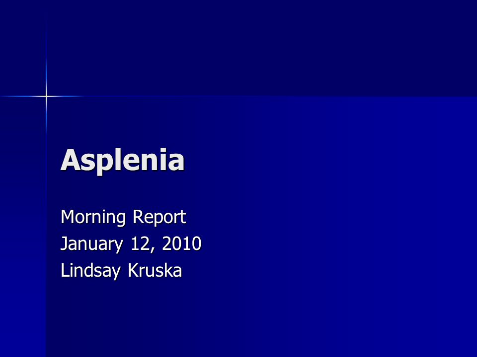 Asplenia Morning Report January 12, 2010 Lindsay Kruska