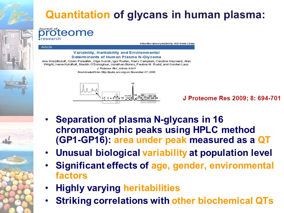 Separation of plasma N-glycans in 16 chromatographic peaks using HPLC method (GP1-GP16): area under peak measured as a QT Quantitation of glycans in h