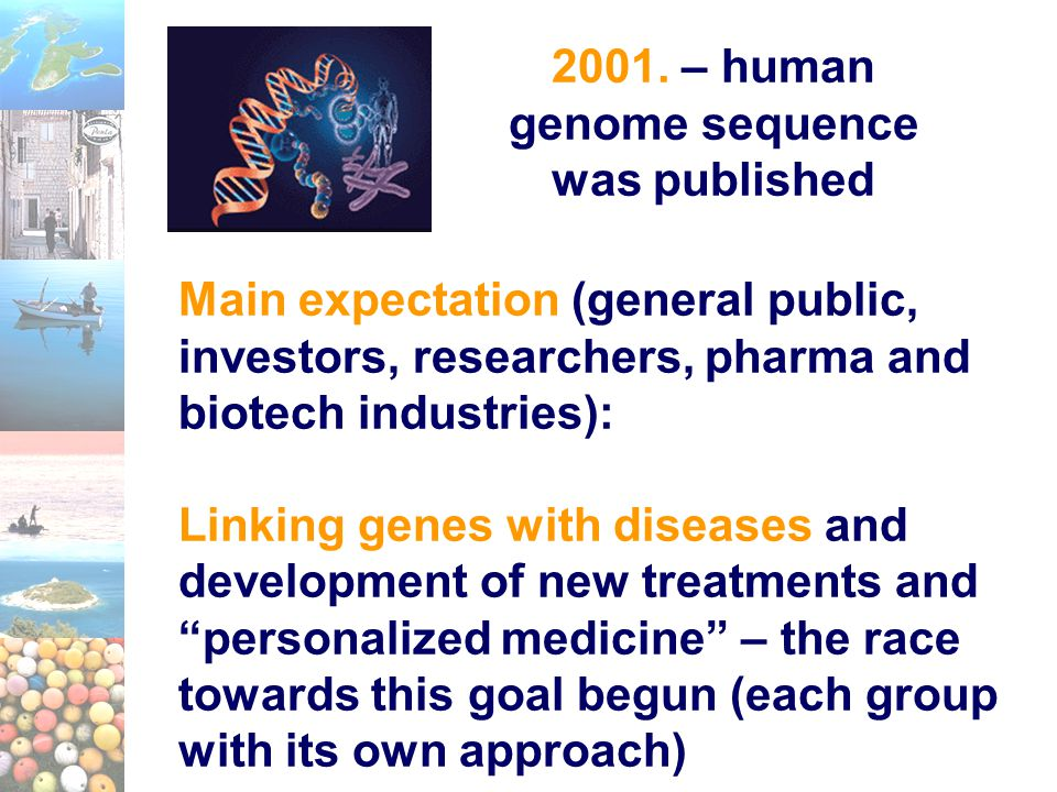 2001. – human genome sequence was published Main expectation (general public, investors, researchers, pharma and biotech industries): Linking genes wi