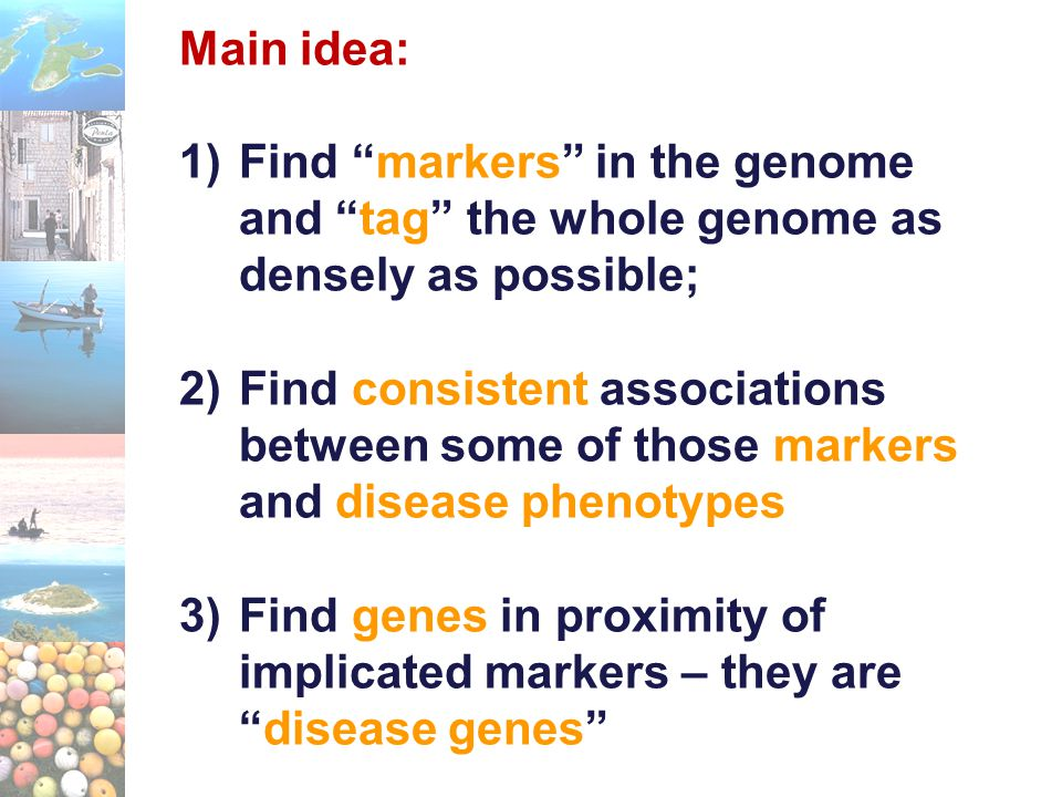"Main idea: 1)Find ""markers"" in the genome and ""tag"" the whole genome as densely as possible; 2)Find consistent associations between some of those mark"