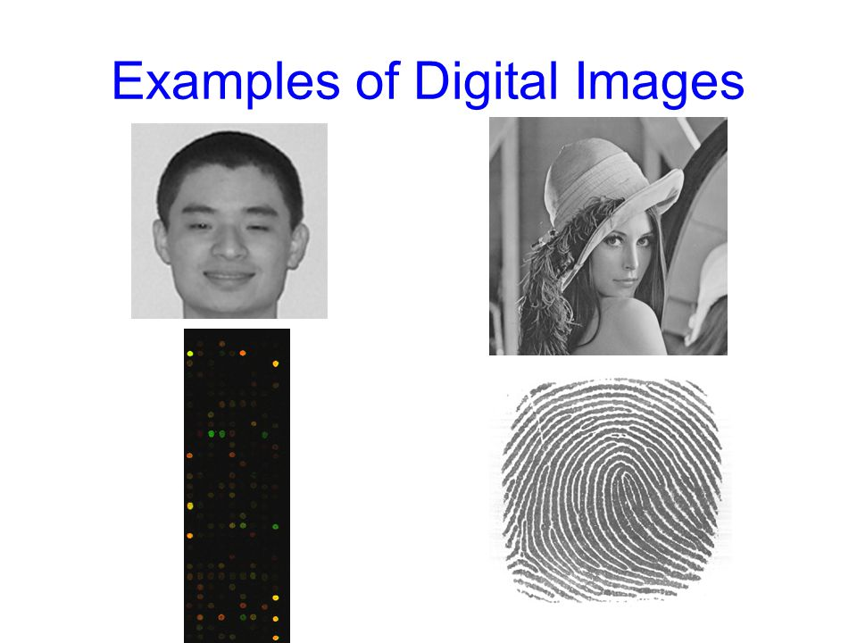 Image Processing System