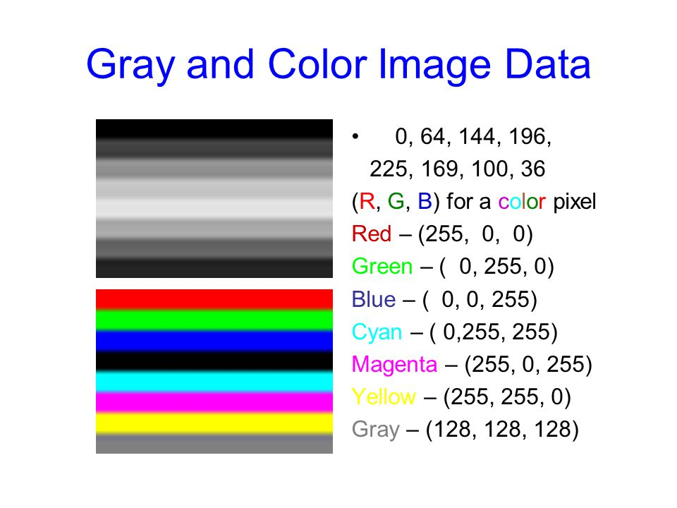 Image Representation (Gray/Color) A gray level image is usually represented by an M by N matrix whose elements are all integers in {0,1, …, 255} corresponding to brightness scales A color image is usually represented by 3 M x N matrices whose elements are all integers in {0,1, …, 255} corresponding to 3 primary primitives of colors such as Red, Green, Blue
