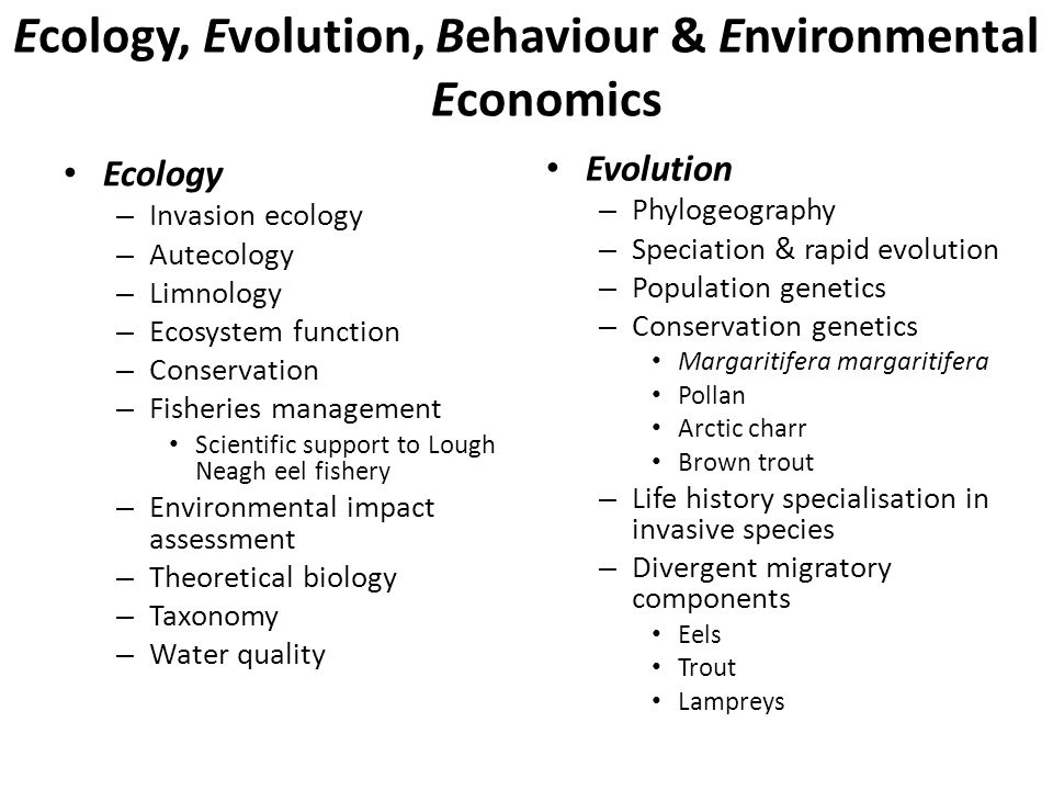 Ecology, Evolution, Behaviour & Environmental Economics Ecology – Invasion ecology – Autecology – Limnology – Ecosystem function – Conservation – Fisheries management Scientific support to Lough Neagh eel fishery – Environmental impact assessment – Theoretical biology – Taxonomy – Water quality Evolution – Phylogeography – Speciation & rapid evolution – Population genetics – Conservation genetics Margaritifera margaritifera Pollan Arctic charr Brown trout – Life history specialisation in invasive species – Divergent migratory components Eels Trout Lampreys