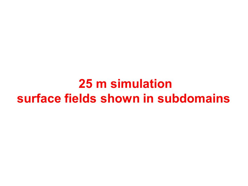 25 m simulation surface fields shown in subdomains