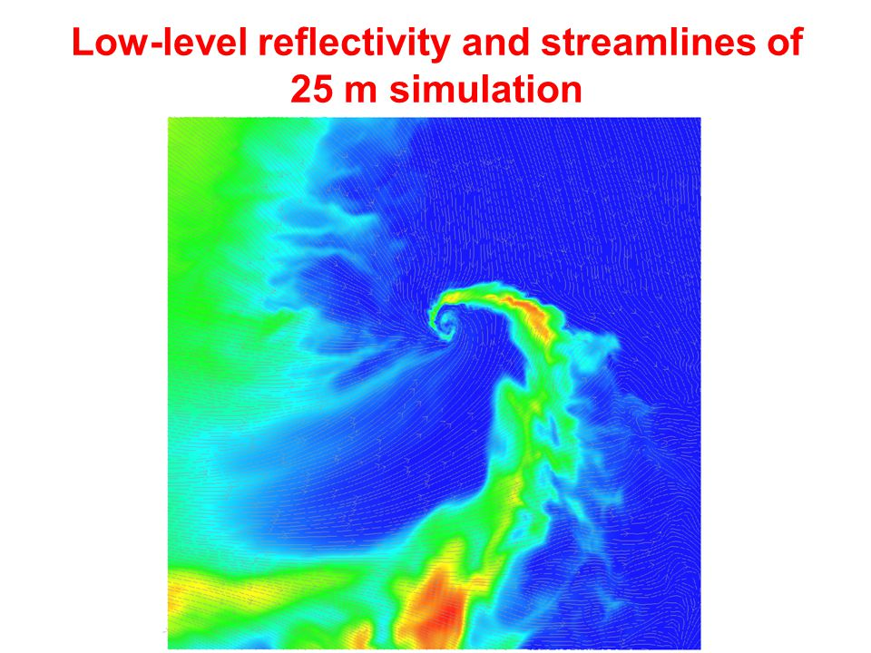 Low-level reflectivity and streamlines of 25 m simulation