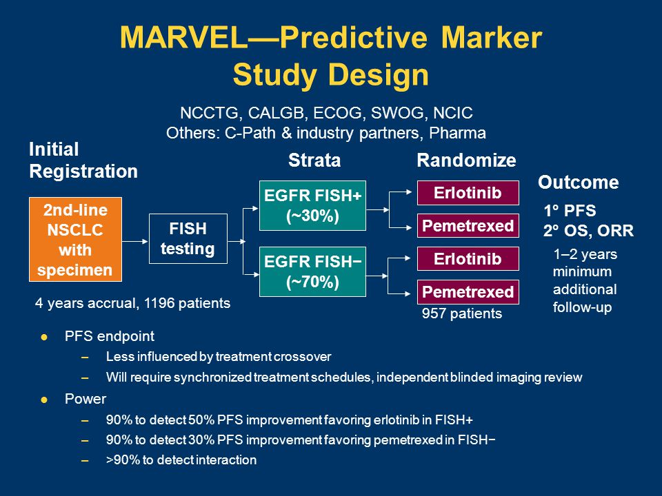MARVEL—Predictive Marker Study Design PFS endpoint –Less influenced by treatment crossover –Will require synchronized treatment schedules, independent blinded imaging review Power –90% to detect 50% PFS improvement favoring erlotinib in FISH+ –90% to detect 30% PFS improvement favoring pemetrexed in FISH− –>90% to detect interaction 2nd-line NSCLC with specimen Initial Registration FISH testing EGFR FISH+ (~30%) EGFR FISH− (~70%) Erlotinib Pemetrexed Erlotinib Pemetrexed StrataRandomize Outcome 1° PFS 2° OS, ORR NCCTG, CALGB, ECOG, SWOG, NCIC Others: C-Path & industry partners, Pharma 957 patients 4 years accrual, 1196 patients 1–2 years minimum additional follow-up