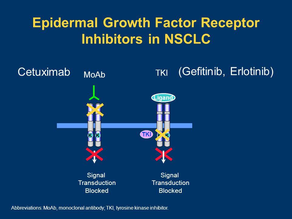 Epidermal Growth Factor Receptor Inhibitors in NSCLC (Gefitinib, Erlotinib) Signal Transduction Blocked TKI Ligand KK TKI Signal Transduction Blocked MoAb KK Cetuximab Abbreviations: MoAb, monoclonal antibody; TKI, tyrosine kinase inhibitor.