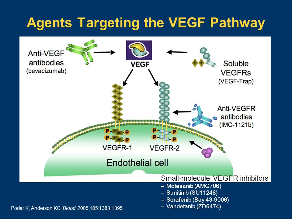 Agents Targeting the VEGF Pathway Podar K, Anderson KC.