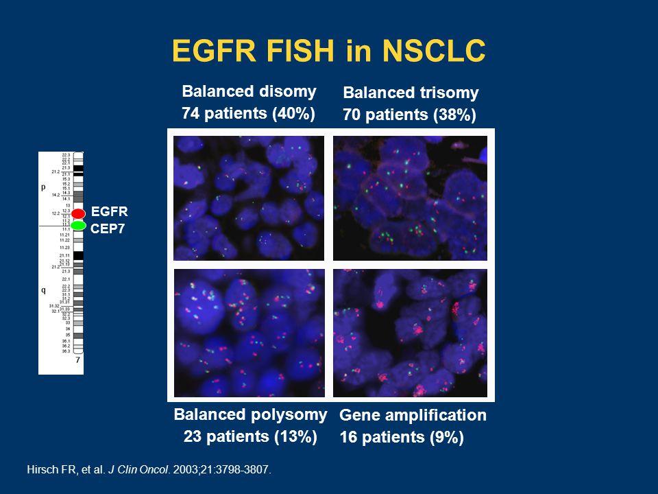 EGFR FISH in NSCLC EGFR CEP7 Balanced disomy 74 patients (40%) Balanced trisomy 70 patients (38%) Balanced polysomy 23 patients (13%) Gene amplification 16 patients (9%) Hirsch FR, et al.