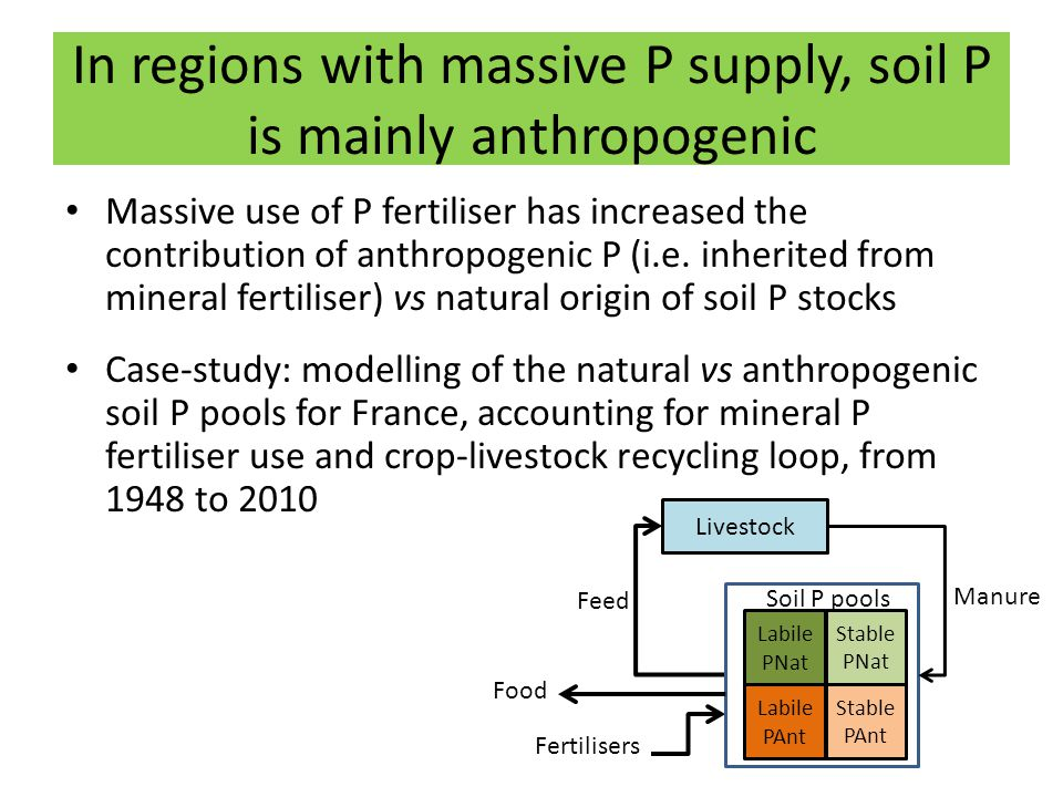 In regions with massive P supply, soil P is mainly anthropogenic Massive use of P fertiliser has increased the contribution of anthropogenic P (i.e. i