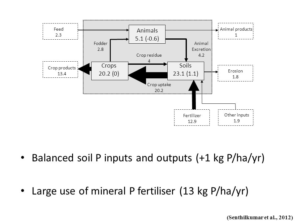 Balanced soil P inputs and outputs (+1 kg P/ha/yr) Large use of mineral P fertiliser (13 kg P/ha/yr) (Senthilkumar et al., 2012) Other inputs 1.9 Fert