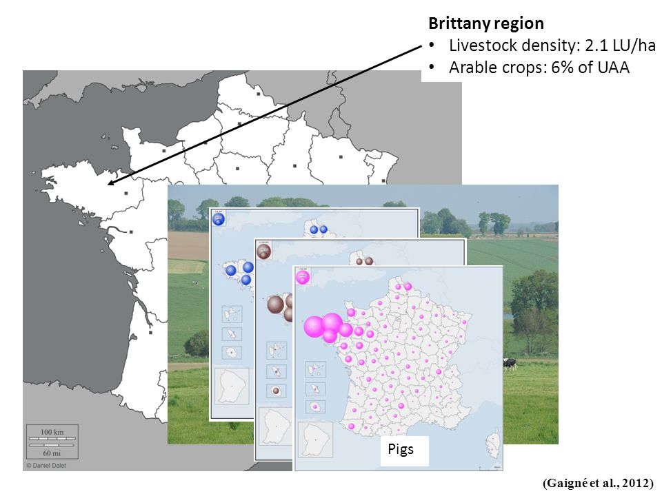 Brittany region Livestock density: 2.1 LU/ha Arable crops: 6% of UAA (Gaigné et al., 2012) Dairy cows Poultry Pigs