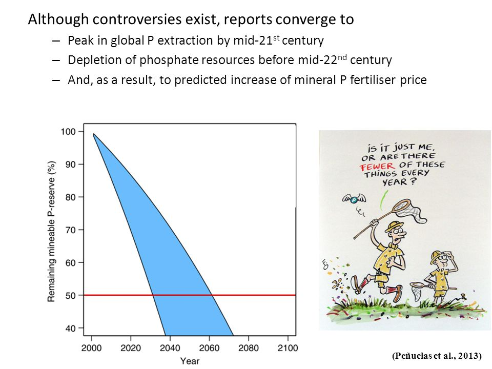 Although controversies exist, reports converge to – Peak in global P extraction by mid-21 st century – Depletion of phosphate resources before mid-22 nd century – And, as a result, to predicted increase of mineral P fertiliser price (Peñuelas et al., 2013)