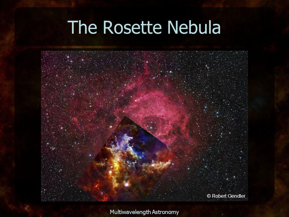 Multiwavelength Astronomy The Rosette Nebula © Robert Gendler