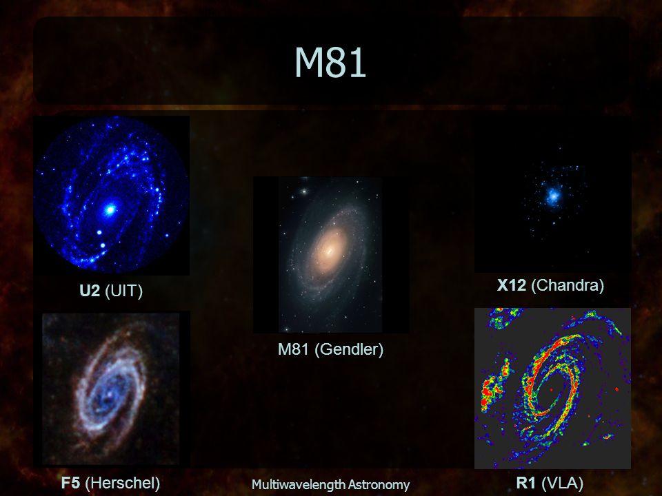 Multiwavelength Astronomy M81 M81 (Gendler) U2 (UIT) X12 (Chandra) F5 (Herschel)R1 (VLA)