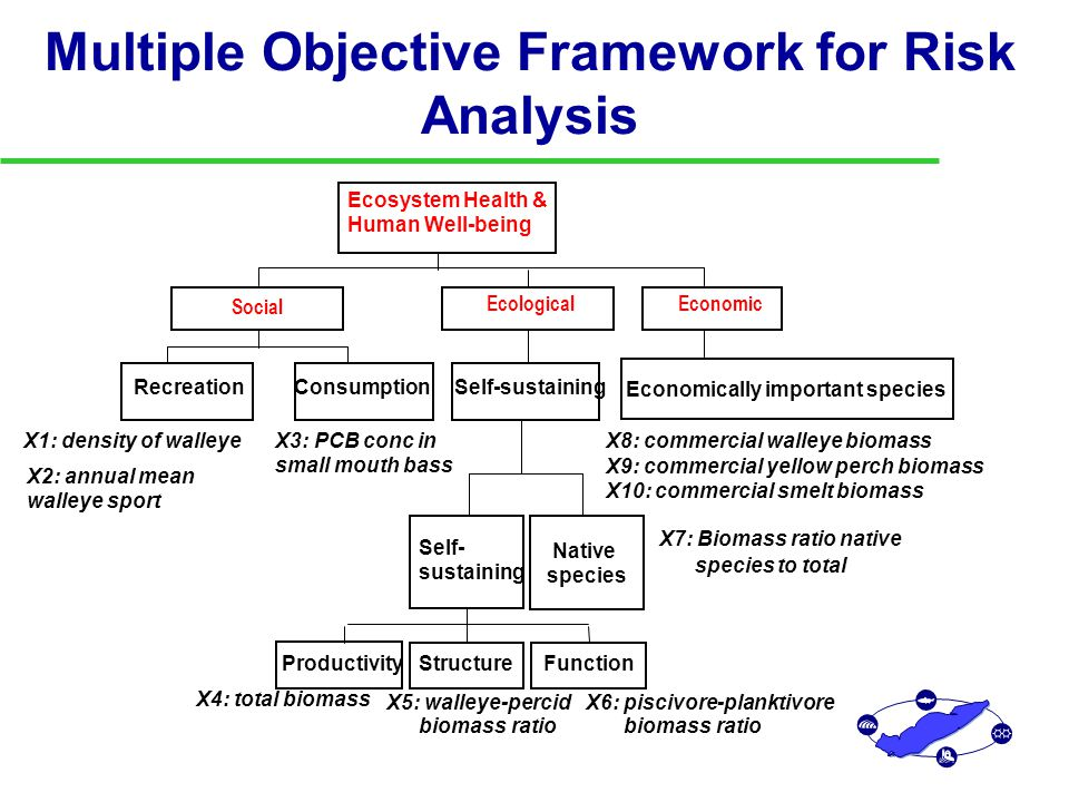 Multiple Objective Framework for Risk Analysis Recreation X1: density of walleye X2: annual mean walleye sport Consumption X3: PCB conc in small mouth bass Social Productivity X4: total biomass Structure X5: walleye-percid biomass ratio Function X6: piscivore-planktivore biomass ratio Self- sustaining Native species X7: Biomass ratio native species to total Self-sustaining Ecological Economically important species X8: commercial walleye biomass X9: commercial yellow perch biomass X10: commercial smelt biomass Economic Ecosystem Health & Human Well-being