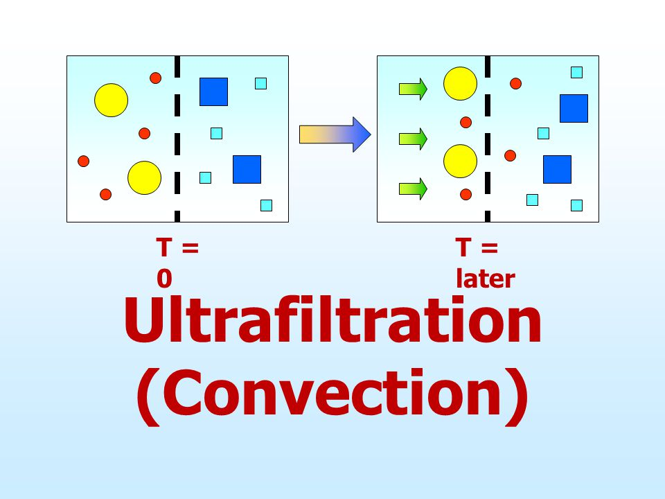 T = 0 Ultrafiltration (Convection) T = later