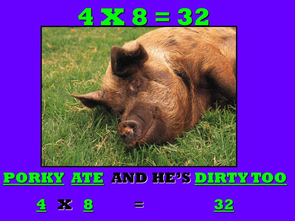 4 X 8 = 32 PORKY PORKY ATE ATE AND HE'S DIRTY TOO 4 X X 8 8 = = 32