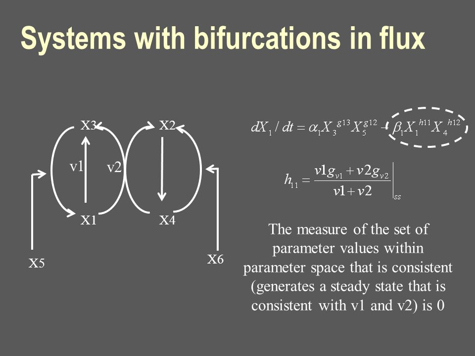 Systems with bifurcations in flux X3 X1 X2 X4 X5 X6 v1 v2 The measure of the set of parameter values within parameter space that is consistent (genera