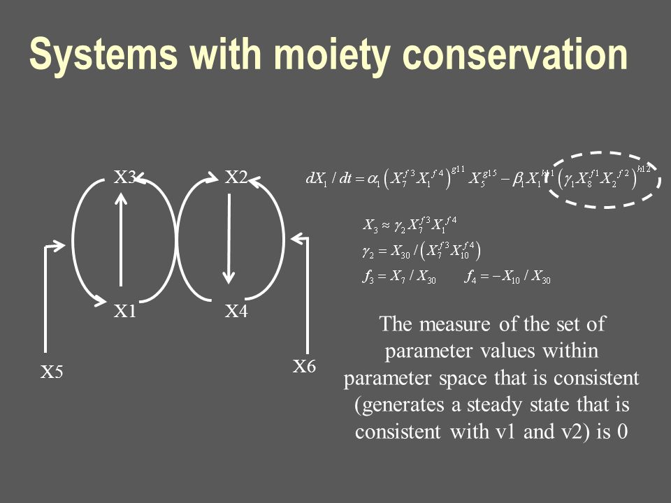 Systems with moiety conservation X3 X1 X2 X4 X5 X6 The measure of the set of parameter values within parameter space that is consistent (generates a s