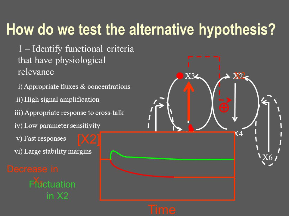 X3 X1 X2 X4 X5 X6 How do we test the alternative hypothesis? 1 – Identify functional criteria that have physiological relevance i) Appropriate fluxes
