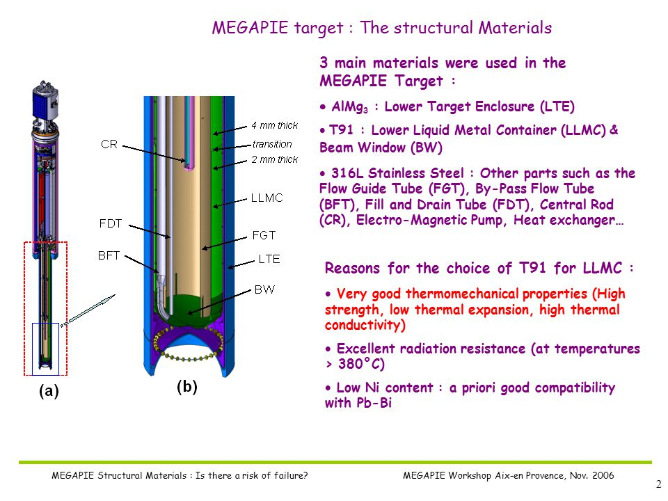 2 MEGAPIE Structural Materials : Is there a risk of failure.