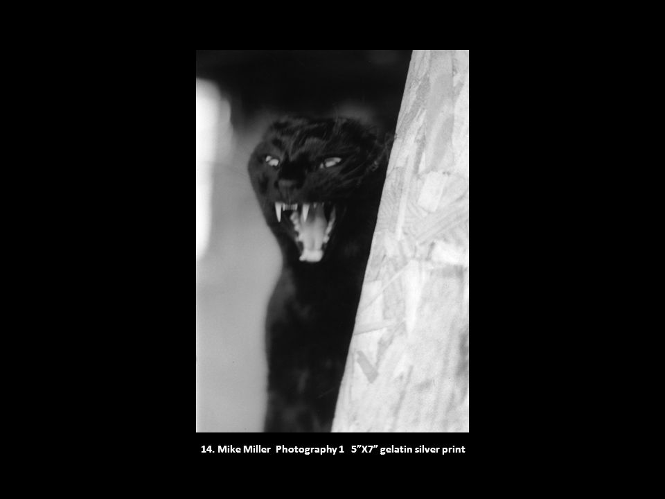 """14. Mike Miller Photography 1 5""""X7"""" gelatin silver print"""