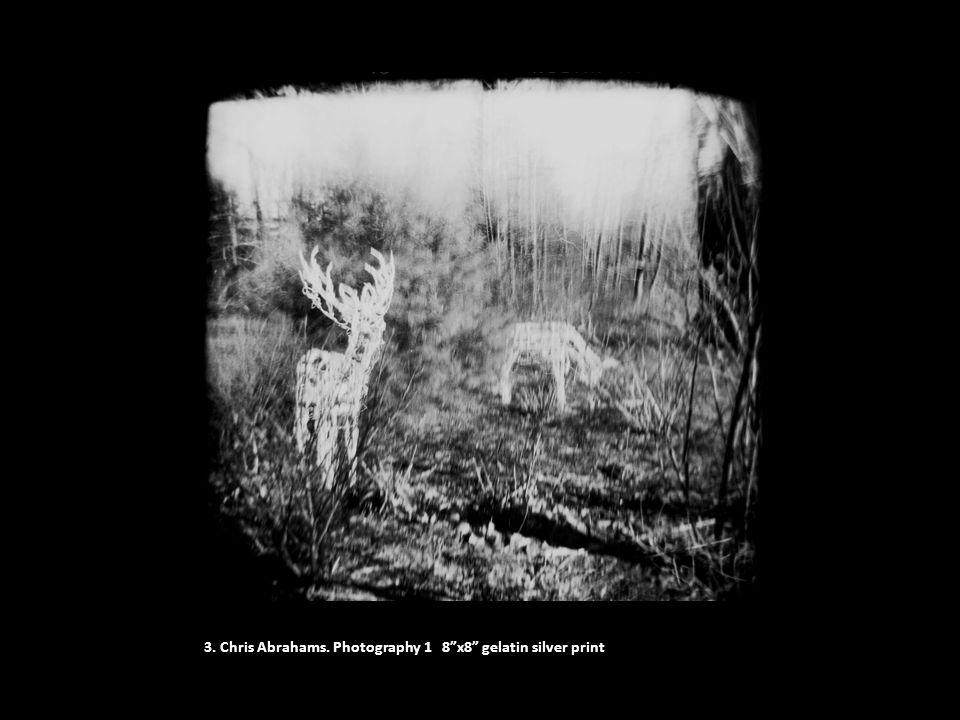 "3. Chris Abrahams. Photography 1 8""x8"" gelatin silver print"