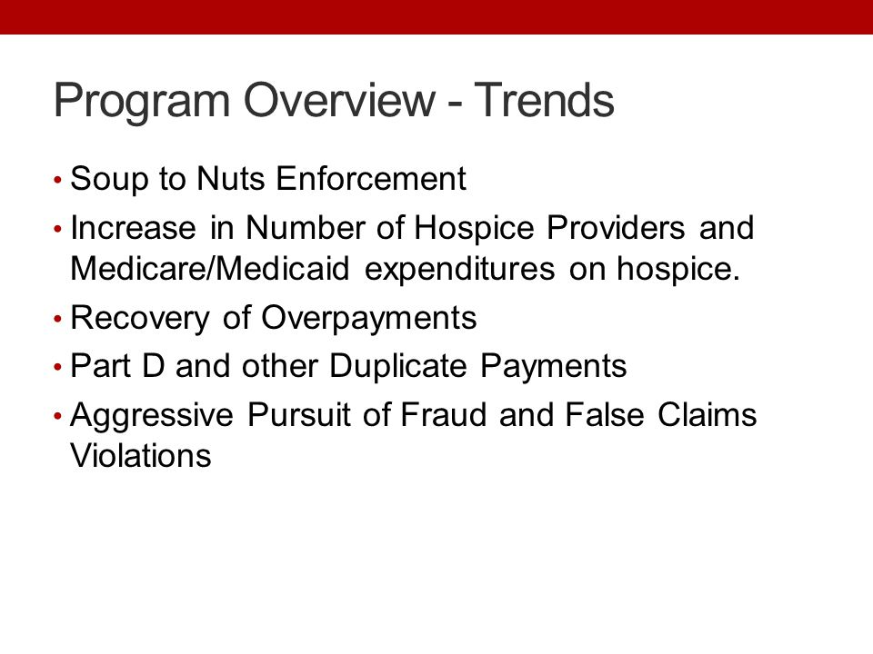 Program Overview - Trends Soup to Nuts Enforcement Increase in Number of Hospice Providers and Medicare/Medicaid expenditures on hospice.